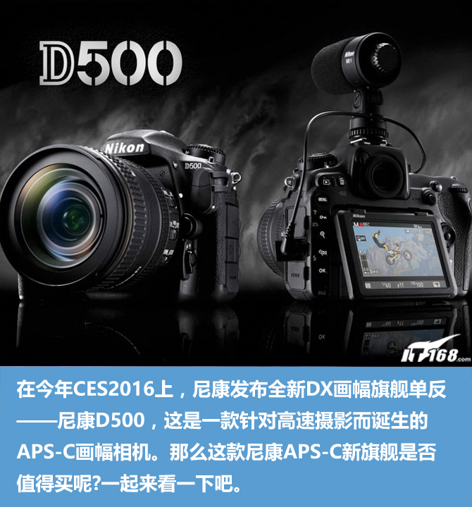 APS-C打鸟新利器 尼康D500单反购买指南
