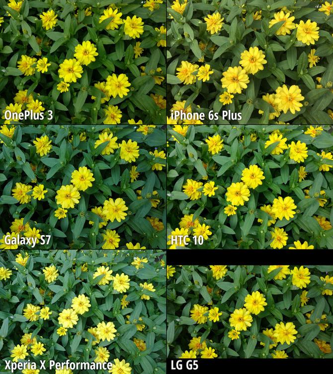 6大旗舰手机拍照功能对比评测 户外拍摄