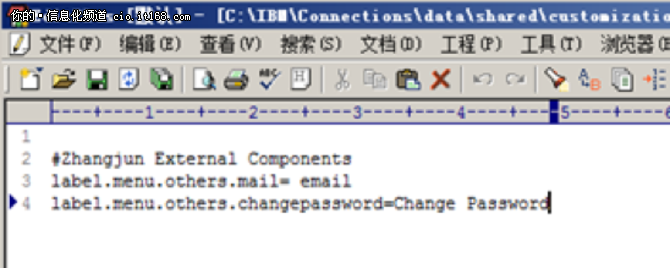 IBM张俊:Connections功能扩展技术分析