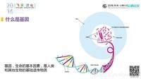 阿里云MaxCompute提升基因数据处理速率