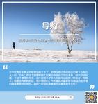 初冬来临 适合初学者拍摄雪景相机top10