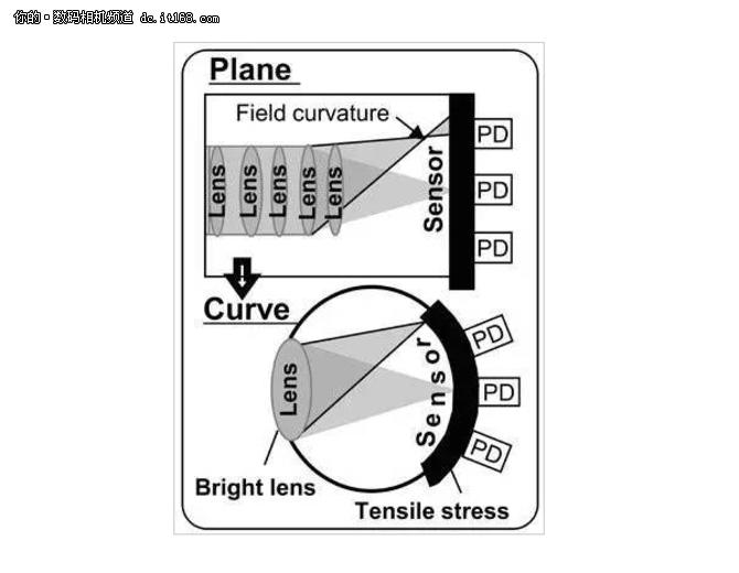 曲面传感器