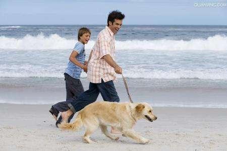 【玩儿法】讲真!这些玩意儿你都没有还遛啥狗呀!