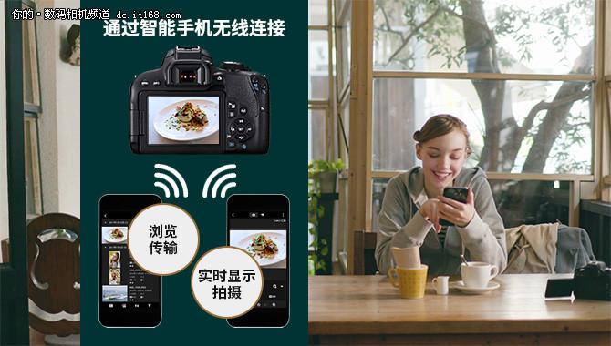 小白也能用单反 佳能EOS 800D试用体验
