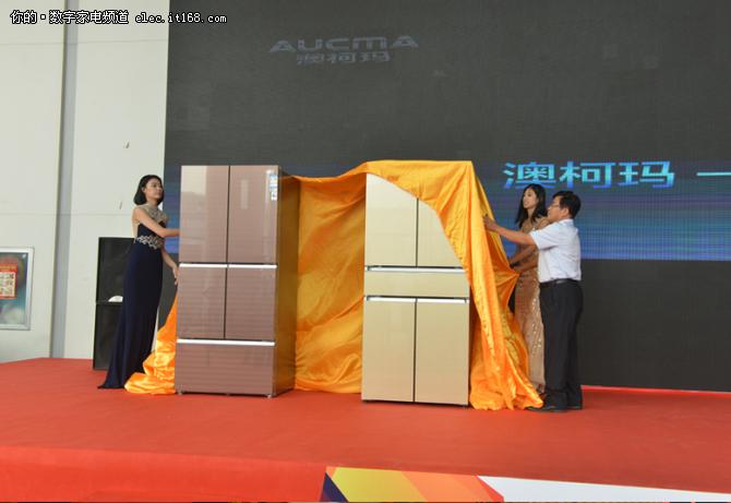 澳柯玛-40℃中式智慧冰箱