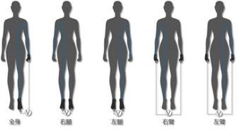 """维密长腿斐讯""""助"""",S7体脂秤健康减脂"""