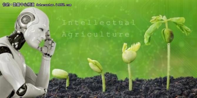 AI弄潮农业 到2025年价值将达26.285亿美元!