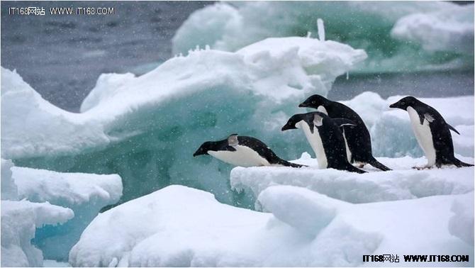挑战南极,    非索尼全画幅微单A9莫属