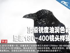 顶级锐度油润色彩 尼康180-400镜头样张