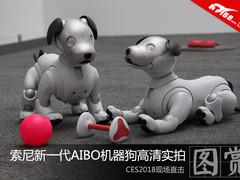 CES:索尼新一代机器狗AIBO高清实拍图赏