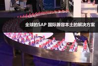 全球的SAP 国际兼容本土的解决方案