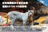 在动物园散步 佳能SX700 HS拍动物