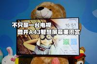 不只是一台电视 酷开A43智慧屏幕美图赏
