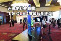 无与伦比的震撼 LG OLED屏幕应用图赏