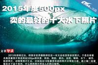2015年度500px卖的最好的十大水下照片