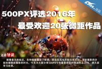 500PX评选2016年最受欢迎20张微距作品