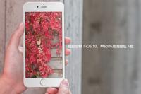 提前尝鲜!iOS 10、MacOS高清壁纸下载