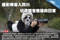 摄影师深入四川 记录国宝熊猫的日常