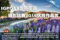 IGPOTY国际花园摄影比赛2016优胜作品赏