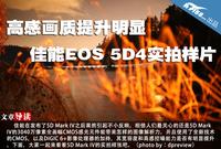高感画质提升明显 佳能EOS 5D4实拍样片