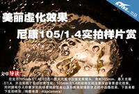 美丽虚化效果 尼康105/1.4实拍样片赏