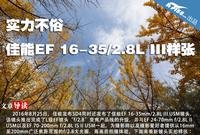 实力不俗 佳能EF 16-35/2.8L III样张