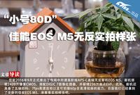 """""""小号80D"""" 佳能EOS M5无反实拍样张"""