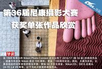 第36届尼康摄影大赛 获奖单张作品欣赏