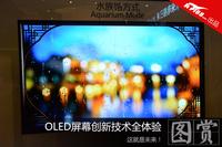 这就是未来!OLED屏幕创新技术全体验
