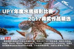 UPY年度水下摄影比赛2017得奖作品精选