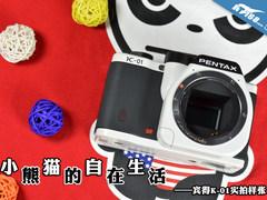 小熊猫的自在生活 宾得K-01实拍样张