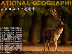 感受自然之美 国家地理杂志每日一图赏
