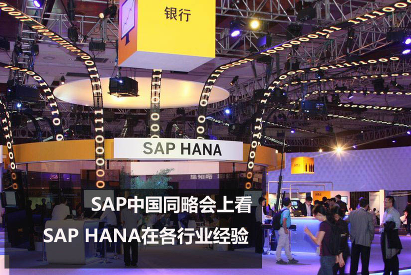 透过中国同略会 看SAP在各行业经验