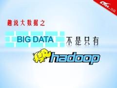 趣说大数据之 大数据不只有Hadoop