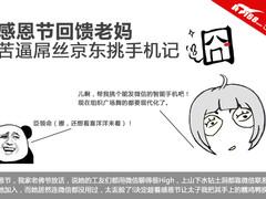 感恩节回馈老妈 苦逼屌丝京东挑手机记