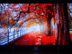 创维55S9300电视4K本地视频播放,图集