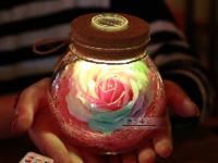 永不凋谢的玫瑰 情人节创意礼物大盘点