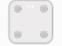 小米生态链发布小米体脂秤与米家摄像机