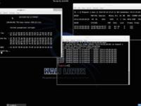 12款白帽子用于黑客渗透测试的操作系统