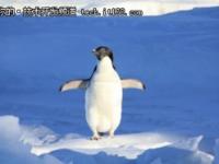 Linux 4.12发布,据传是历史最大版本之一