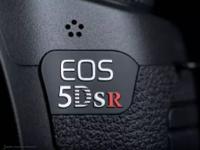 细节成就王道 佳能EOS 5DS R实拍手记