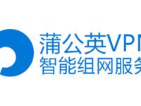 蒲公英VPN智能组网路由器,解决创业公司组网难题