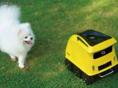 有了这个机器人 狗狗自己在家不会孤单了