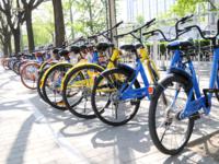 北京暂停共享单车投放 你发现身边的单车变少了吗?