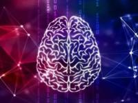 浪潮存储G2中标华中科技大学脑科学研究项目