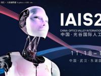2017 中国・光谷国际人工智能产业峰会