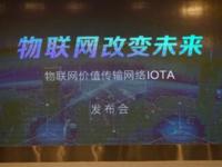 重塑物联网价值传输 海外项目IOTA着陆中国