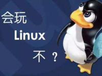 Linux为何能成为超算界的操作系统大佬?