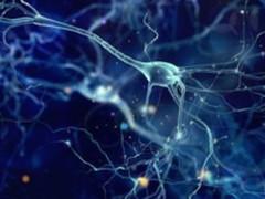 从零开始:你也能创建随时可用神经网络