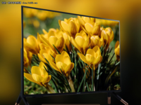 小尺寸也精彩 夏普智能语音电视仅售2788元